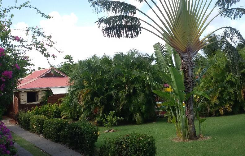 Villa avec jardin tropicale